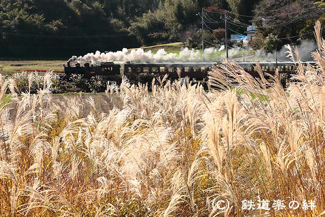 20121104笹原田5D3
