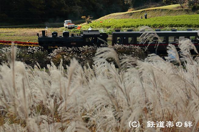 20121110笹原田5D3