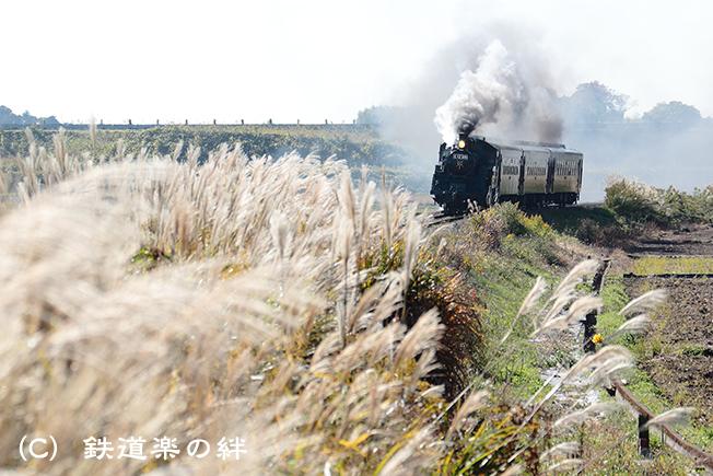 20121110真岡5D3