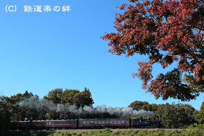 20121110折本5D3