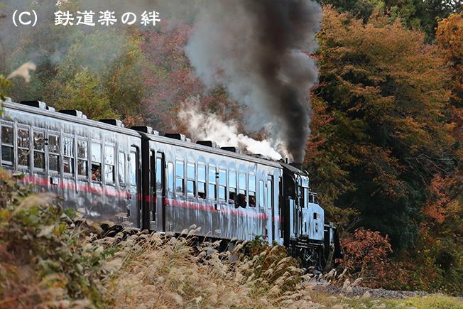 20121110天矢場045D3