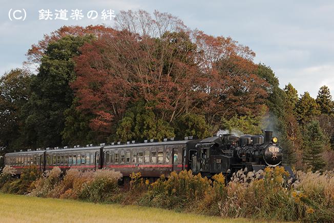 20121110北真岡025D3