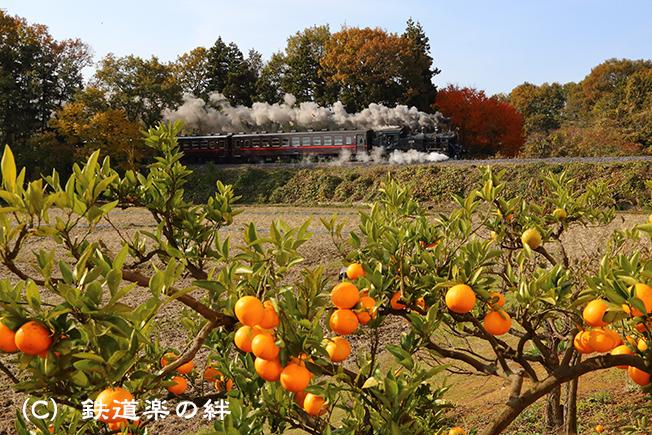 20121124折本015D3