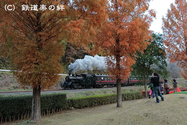 20121124茂木5D3
