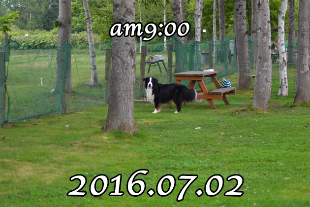 02_20160703133513c19.jpg