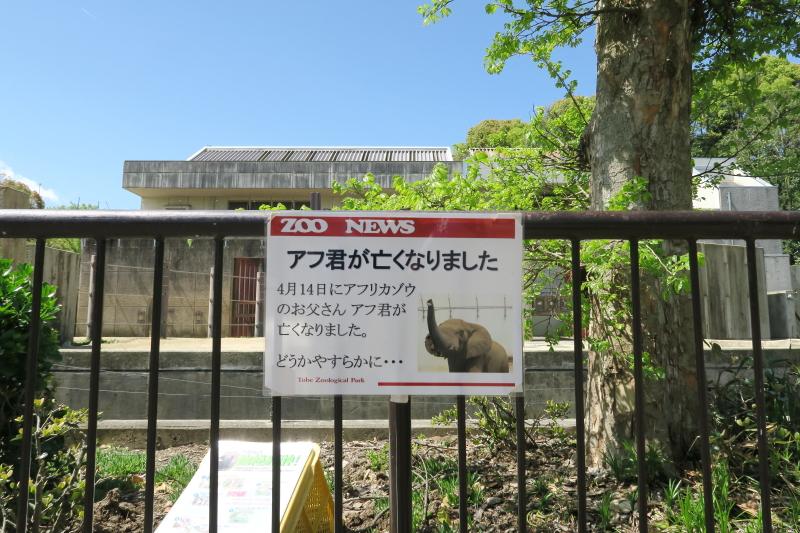 とべ動物園のアフリカゾウ舎にZOO NEWSの案内板