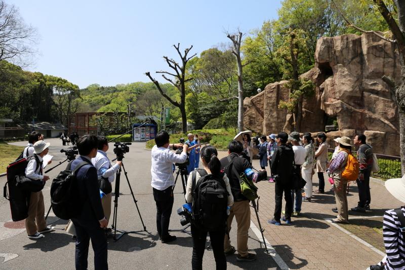 とべ動物園 ライオン舎前にて飼育の日イベント