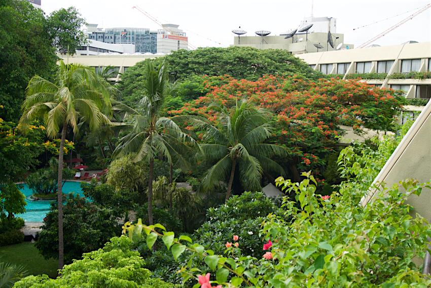 バンコク旅行記 スイソテルナイラートパーク ガーデンビュー