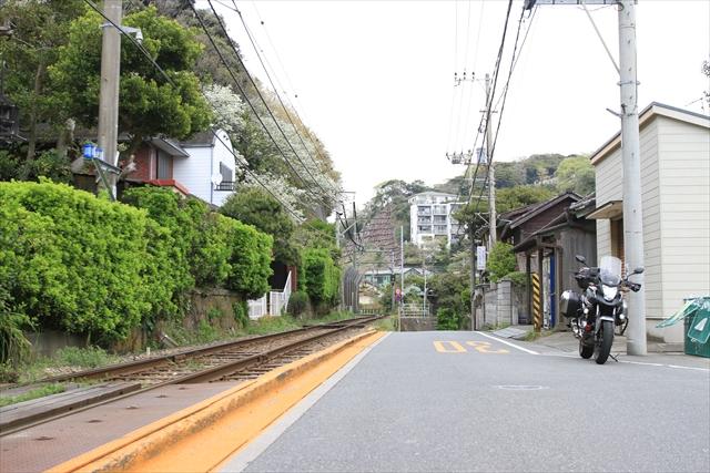 20160410_enoshima035.jpg