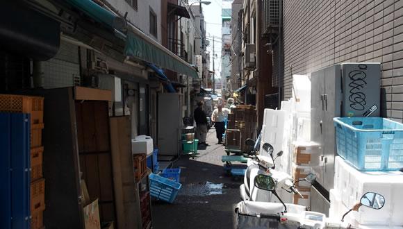 魚介・海鮮料理 本種 (モトダネ)@築地-2
