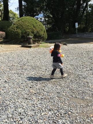 嵐丸 2016.4.5-2