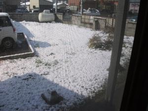 160411雪