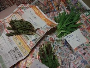 160504山菜3種