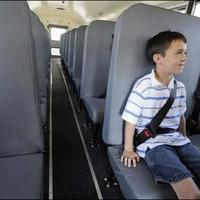 シートベルトを締めた子供
