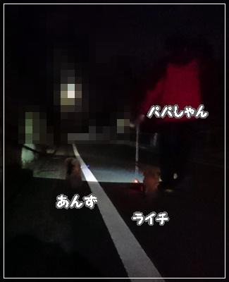 DSC_0415 (2)