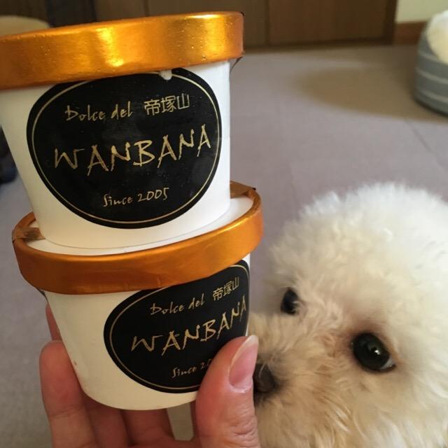 犬用のアイスには賞味期限アリ!だった。。。1