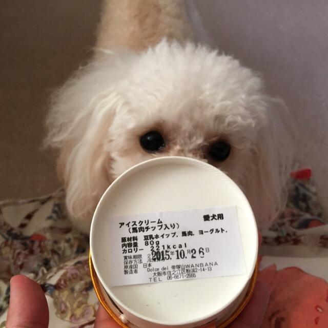 犬用のアイスには賞味期限アリ!だった。。。2