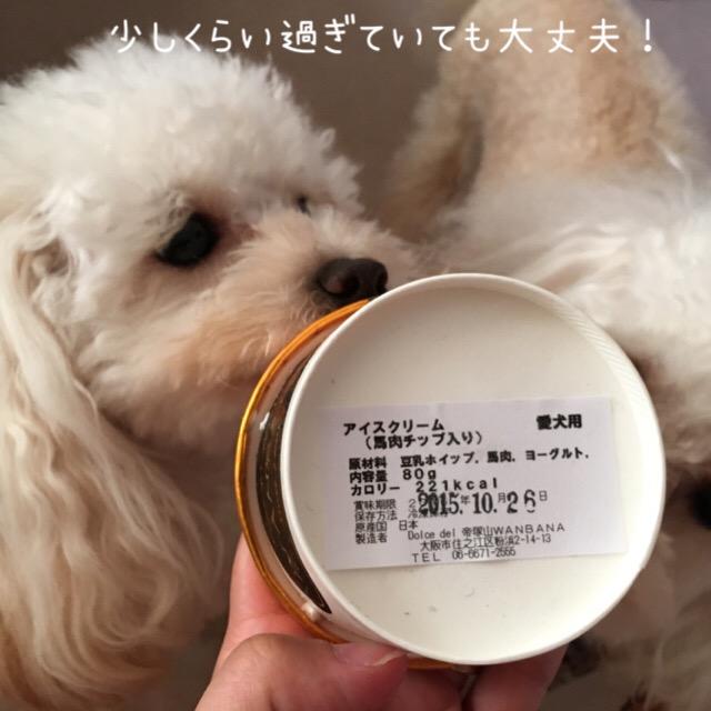 犬用のアイスには賞味期限アリ!だった。。。4