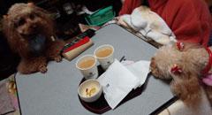 土産のセブンカフェ1
