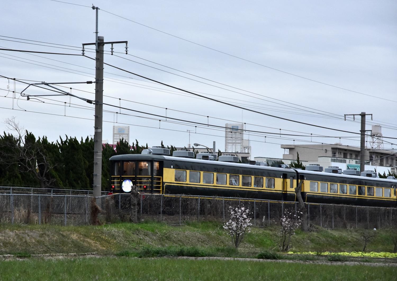 DSC_7569.jpg