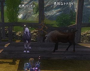 名馬とトナカイ