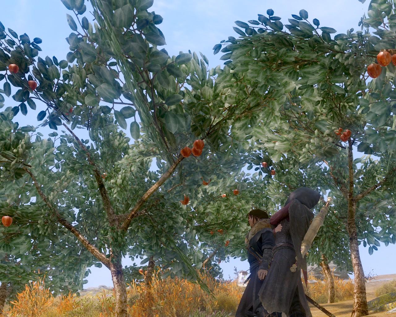 01真っ赤なリンゴ
