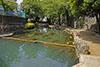 b氷川つり堀公園2