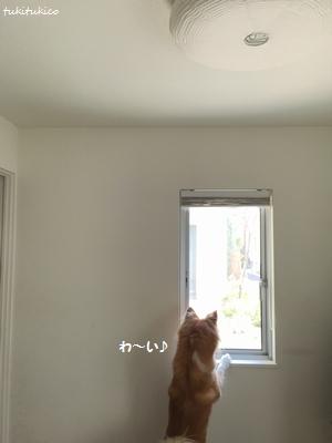 和室の窓2