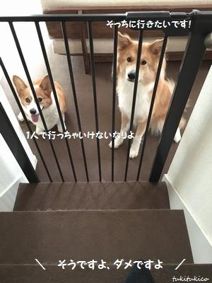 階段フェンス6