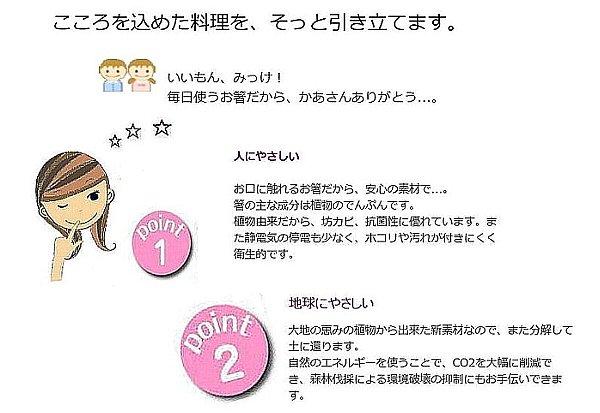 wakasa-hashi1.jpg