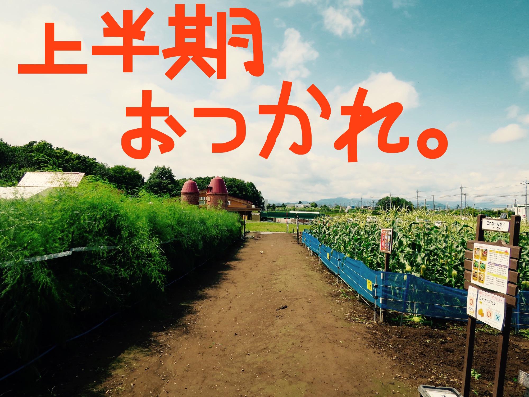 畑の風景2