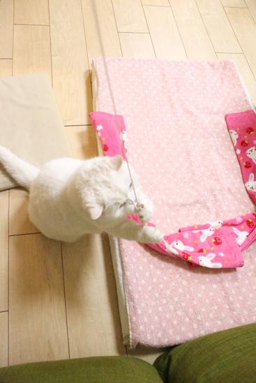 urabanashi-5769.jpg