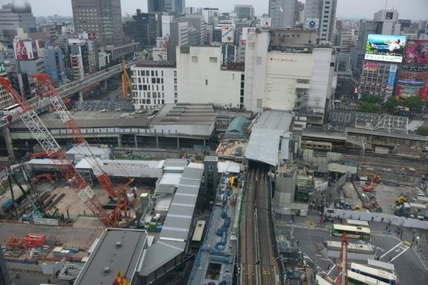 shibuya16040982.jpg