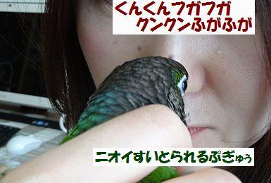 横浜オフ会7
