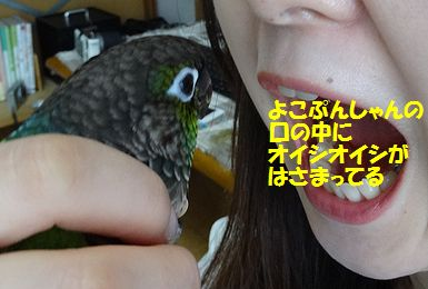 横浜オフ会8