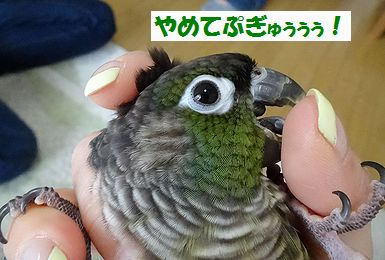 横浜オフ会9