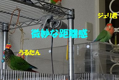 横浜オフ会17