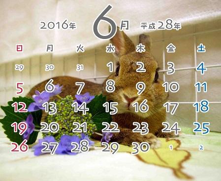 2016年6月卓上カレンダー