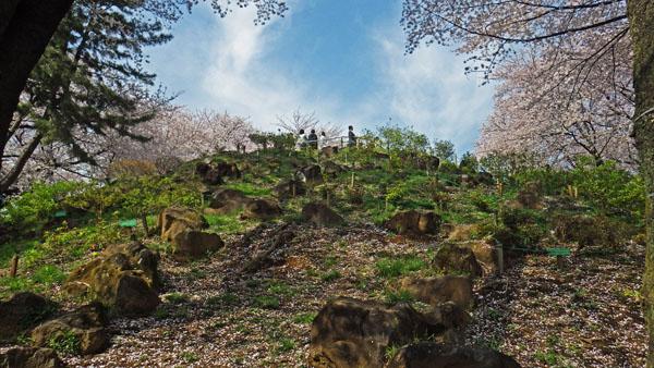 岩の多い箱根山