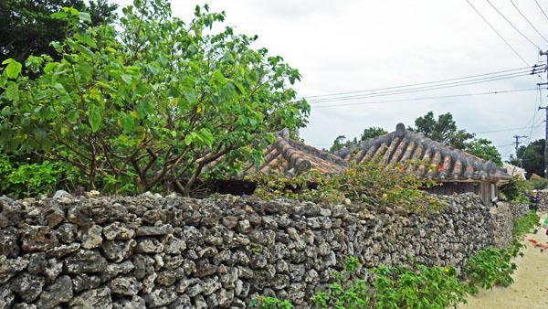 竹冨島の家と屏