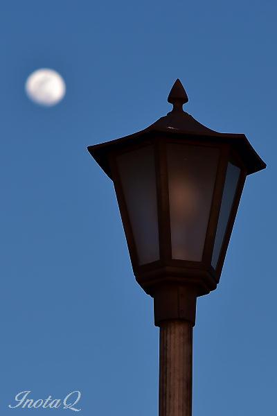 夕月と街灯01