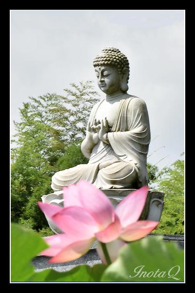 源久寺の仏像と蓮201701