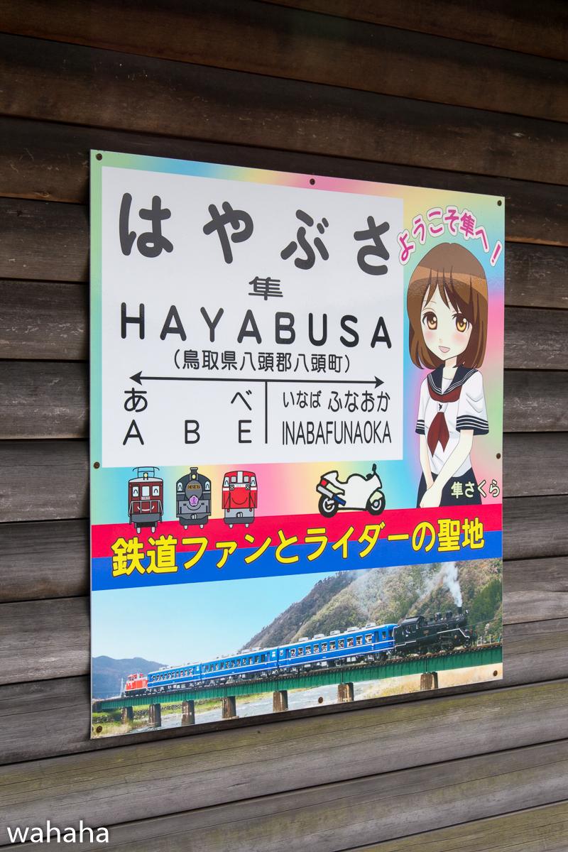 280410wakasa_hayabusa-12.jpg