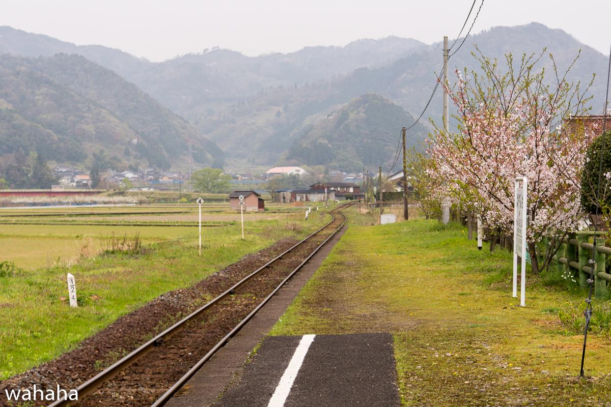 280410wakasa_hayabusa-14B.jpg
