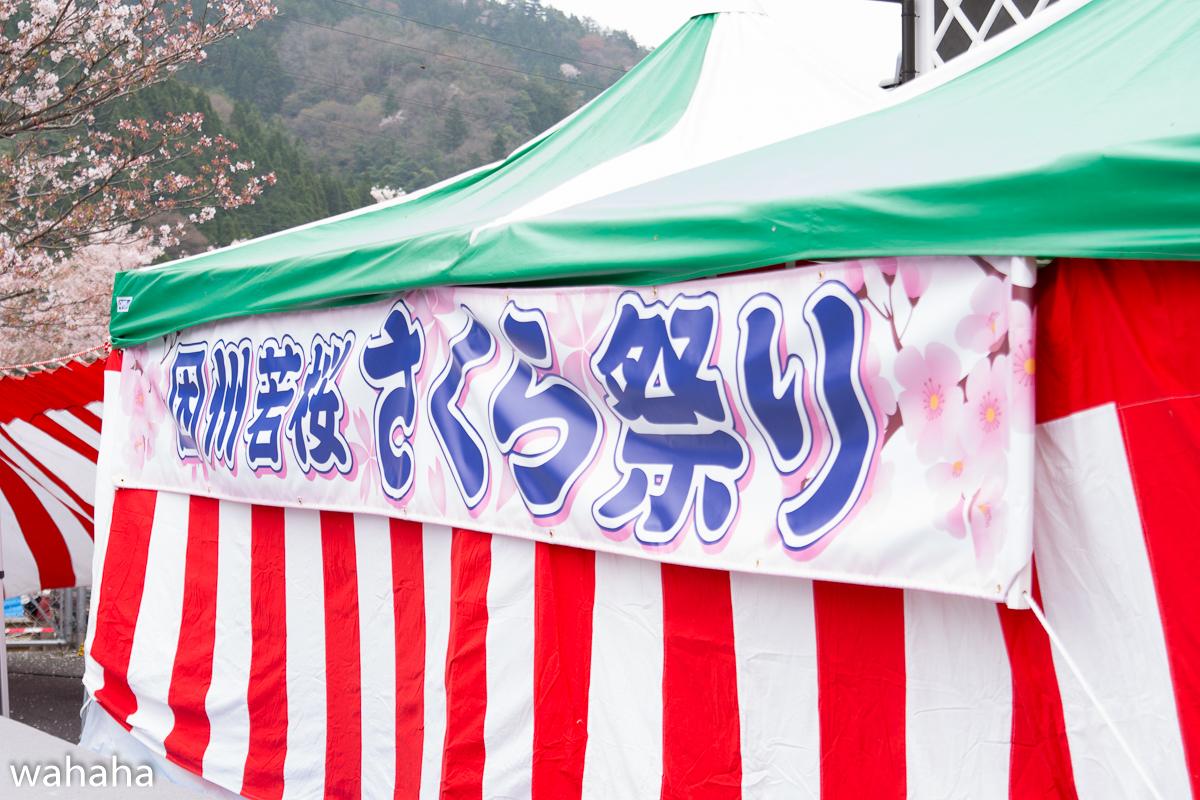 280410wakasa_maturi-00.jpg