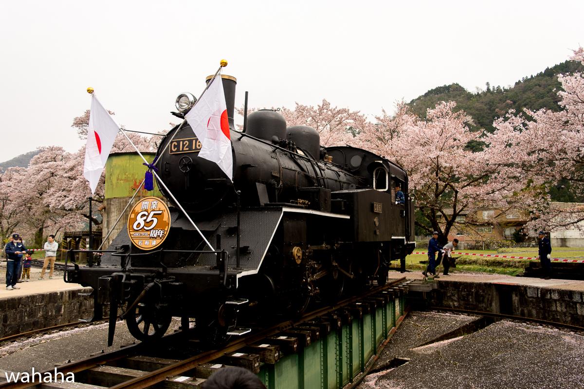 280410wakasa_maturi-06b.jpg