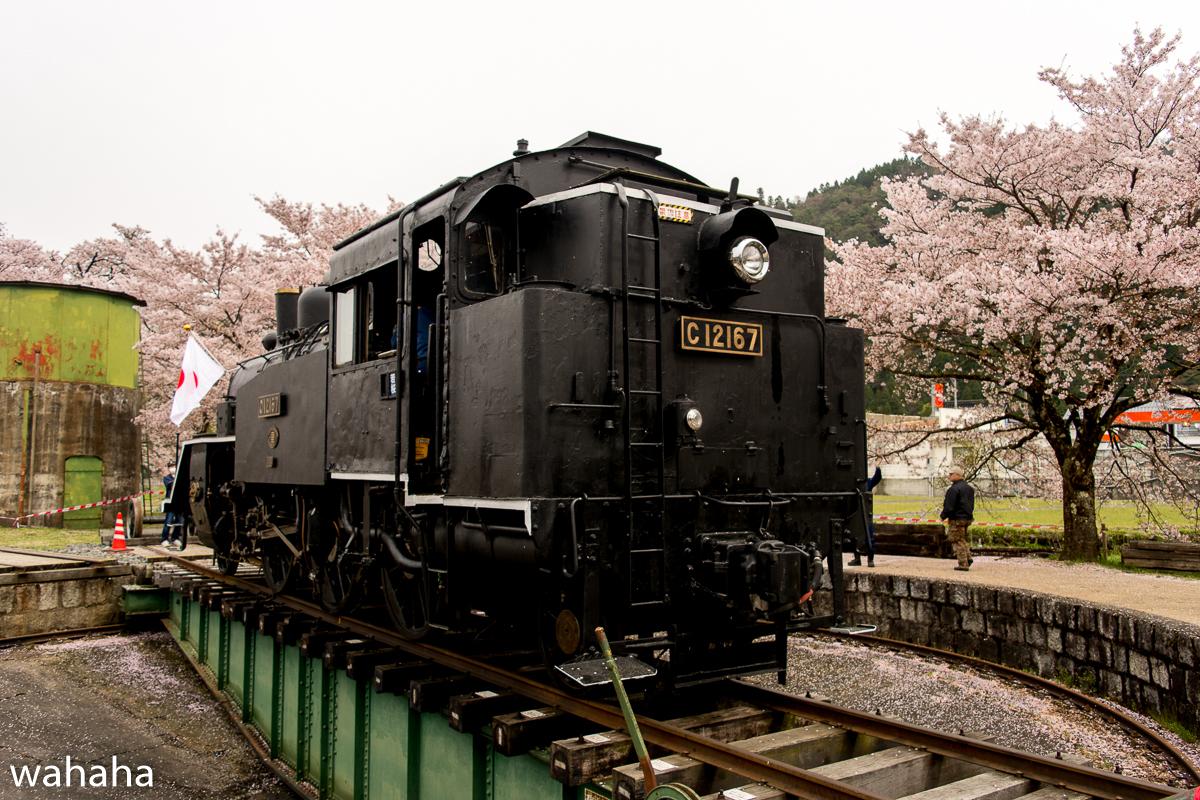 280410wakasa_maturi-08b.jpg