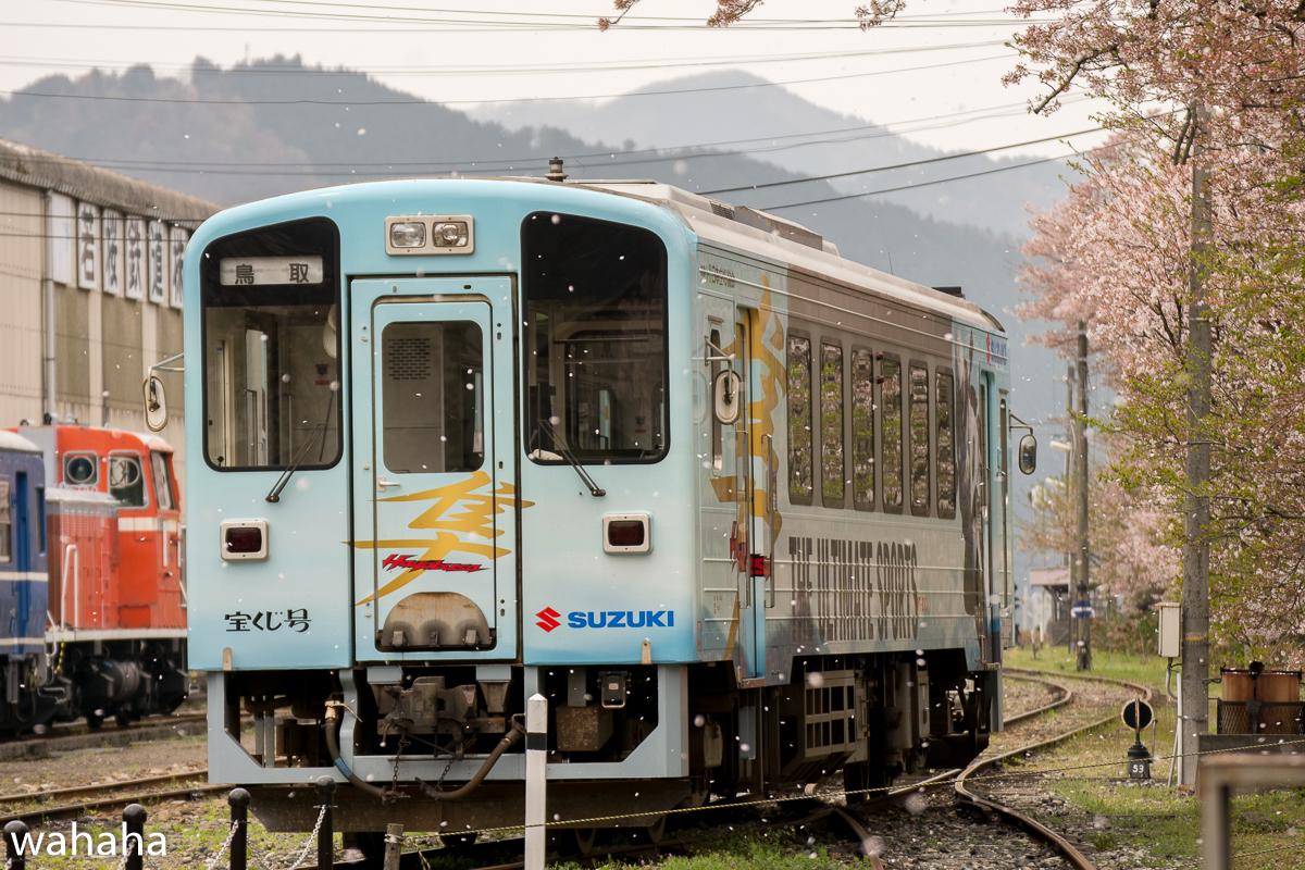 280410wakasa_maturi-44b.jpg