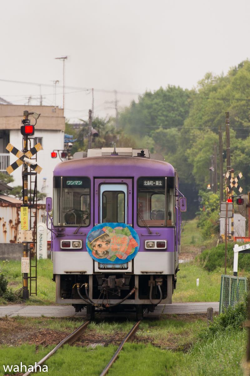 280423houjou-2-3b.jpg