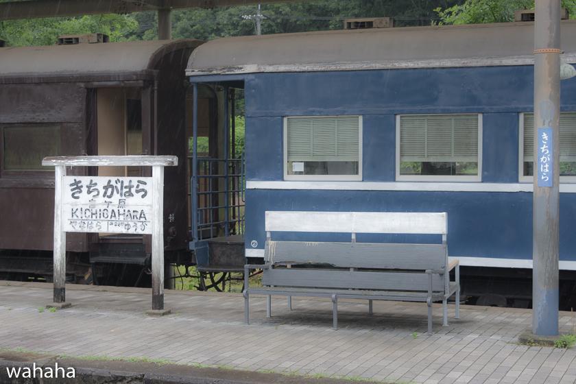 280612katakami-2-1b.jpg